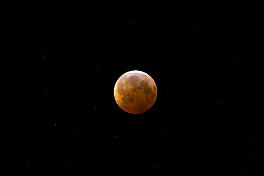Lunar Eclipse  by Forrest Ray