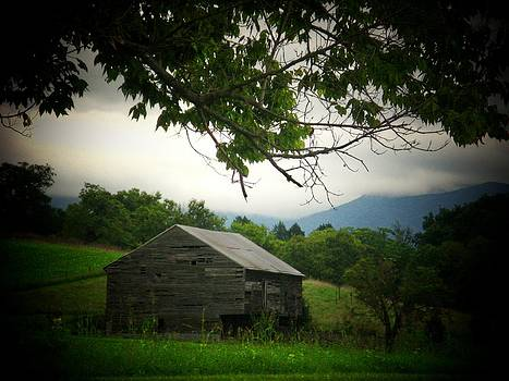 Luray Barn by Joyce Kimble Smith