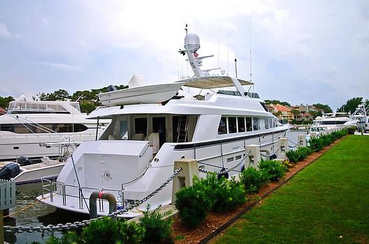 Luxury at Sea by Susan Leggett