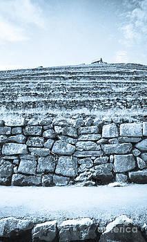 Darcy Michaelchuk - Machu Picchu Terraces