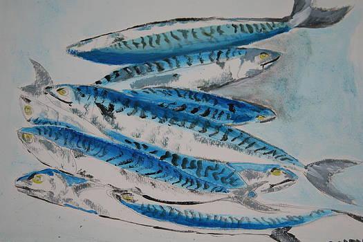 Mackerels by Mladen Kandic