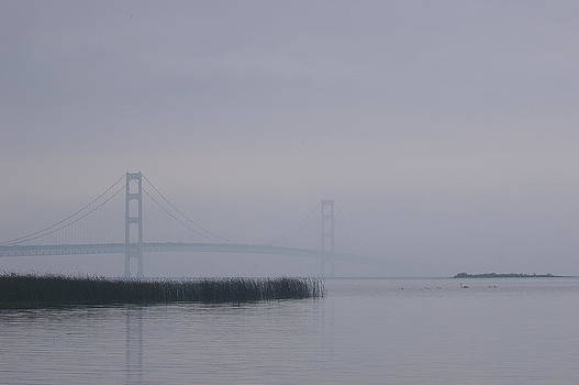 Randy Pollard - Mackinac Bridge and Swans