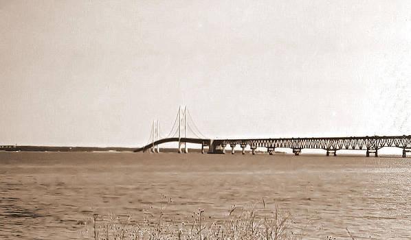 Mackinac Island Bridge by Victoria Sheldon