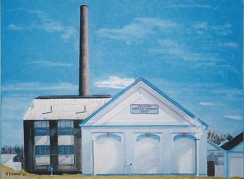 Macon Water Works by Terry Forrest