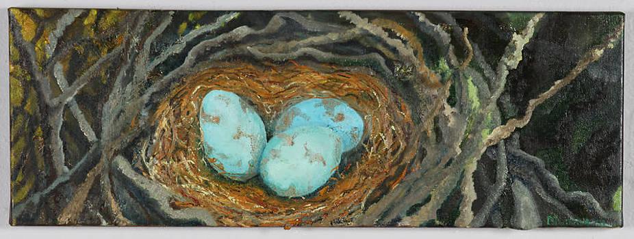 Magic Eggs by Judy  Blundell