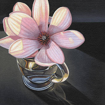 Magnolia Blossom In Glass Mug by Steven Tetlow