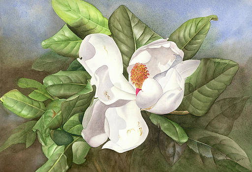 Magnolia I by Leona Jones