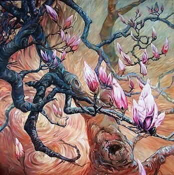 Magnolia by Peter Zuffa