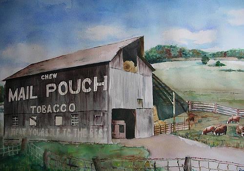 MailPouch by David Ignaszewski