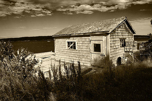 Maine Bait House by Michele Lewandowski