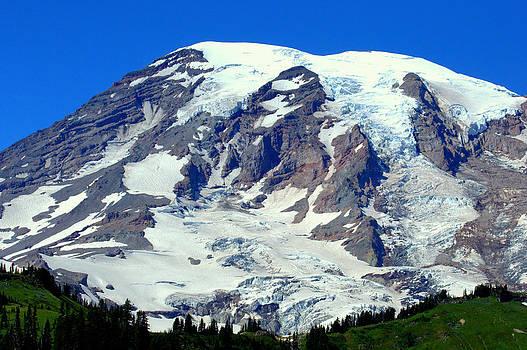 Lynn Bawden - Majestic Mountain