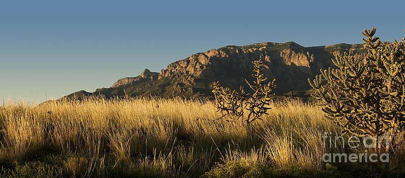 Majestic Sandia Mountains by Matt Tilghman
