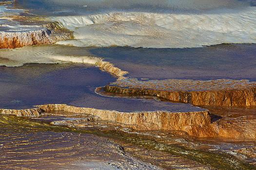 Mammoth Hot Springs by Johan Elzenga