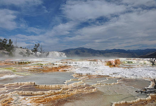 Victoria Porter - Mammoth Hot Springs