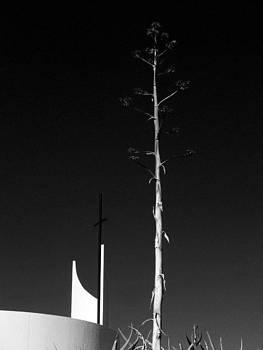 Man Versus God In The Desert by Louis Nugent