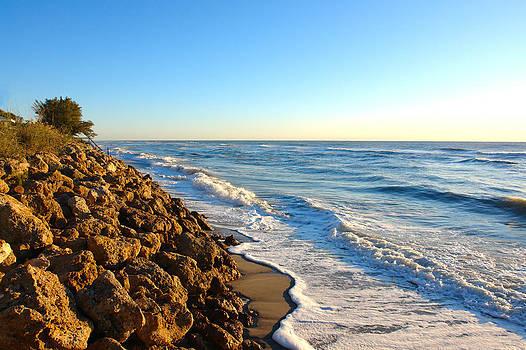 Carmen Del Valle - Manasota Key Beach 2