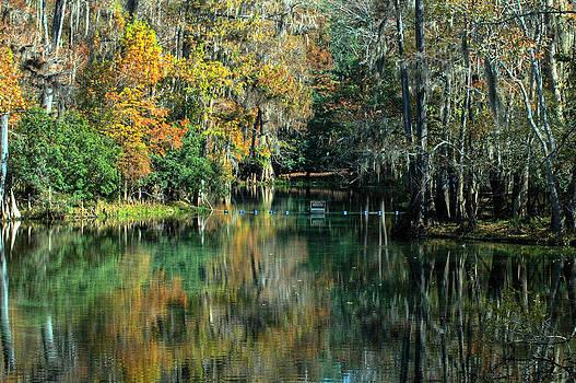 Ronald T Williams - Manatee Spring Florida