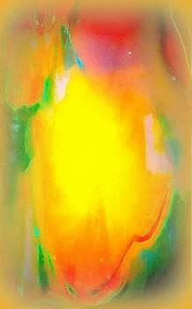 Mango In Mist by Wendy Wiese