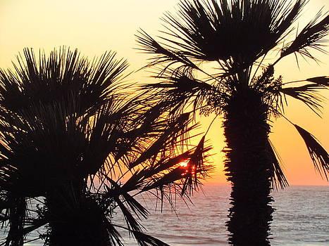 Manhattan Beach Sunset by Tony and Kristi Middleton