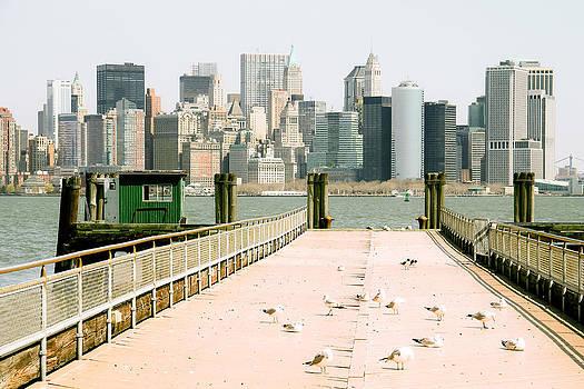Ezequiel Rodriguez Baudo - Manhattan Skyline from Liberty Island