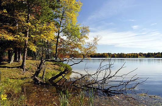 Maple Lake by RJ Martens