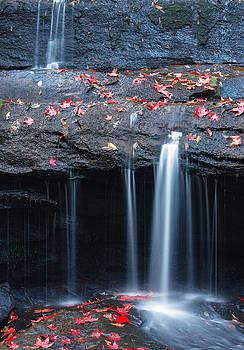Maple leafs near waterfall  by Panya Jampatong