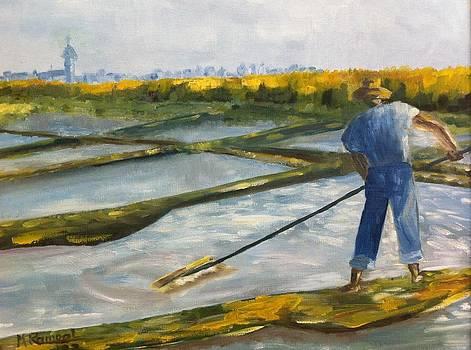 Marais Salant Salt Marsh by Monique Rampal
