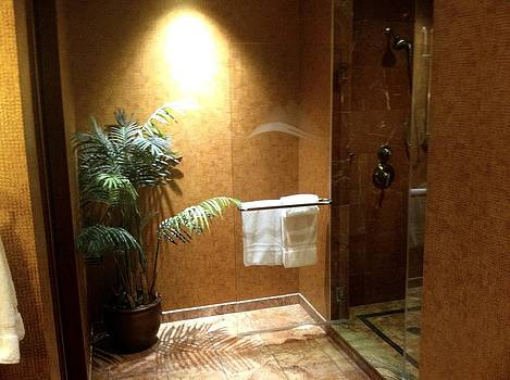 Marble bathroom by Mary M
