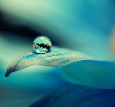 Marble blue by Wendy Riley- Athans