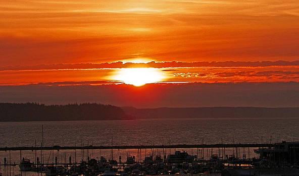 Marina Sunset by Seth Shotwell