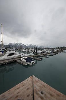 Marina's Edge by Steven Colella