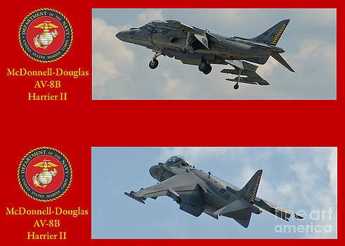 Tim Mulina - Marine Harrier