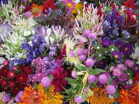 Market Flowers by Bernadette Kazmarski