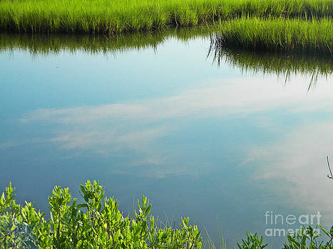 Marsh Reflections by Rainey Daze