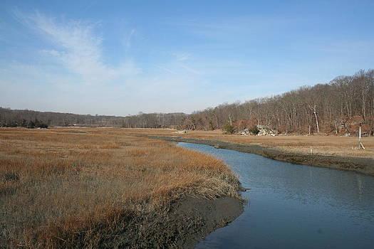 Marshland by Stephen Melcher
