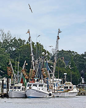 Terry Shoemaker - McClellanville Shrimpers