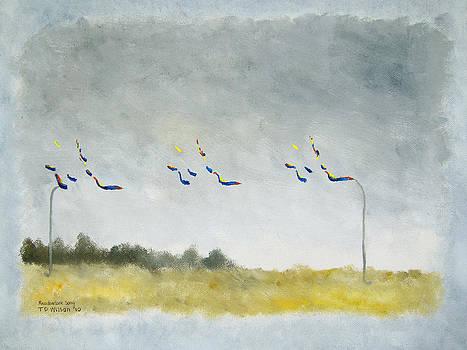 Meadowlark song - spectrogram by TD Wilson