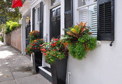 Meeting Street Window Box 2 by Lori Kesten