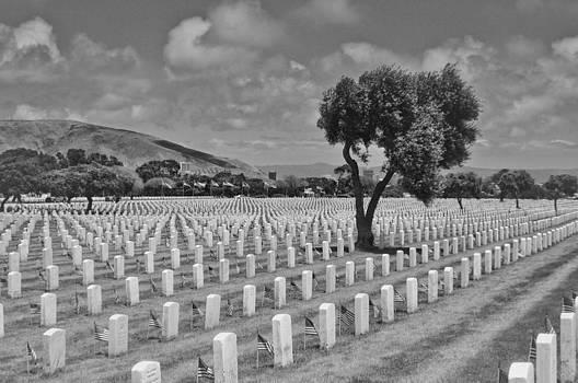 Memorial Day by Ewa Kuc