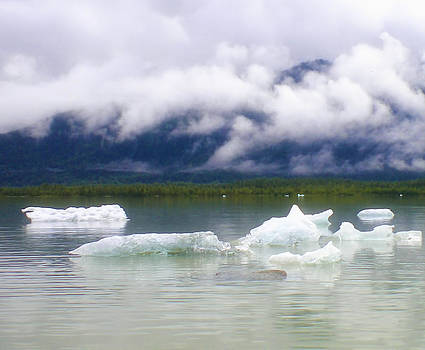 Diana Cox - Mendenhall Lake in August