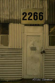 Metal Door A by Alisa Seneor