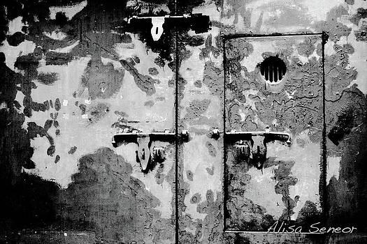 Metal Door by Alisa Seneor