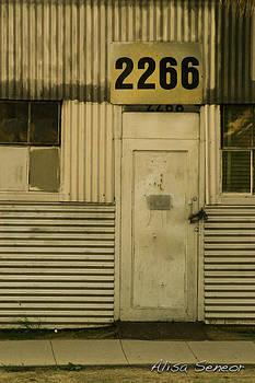 Metal Door B by Alisa Seneor