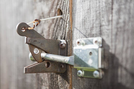 Metal Gate Latch Of Garden Gate by Bryan Mullennix
