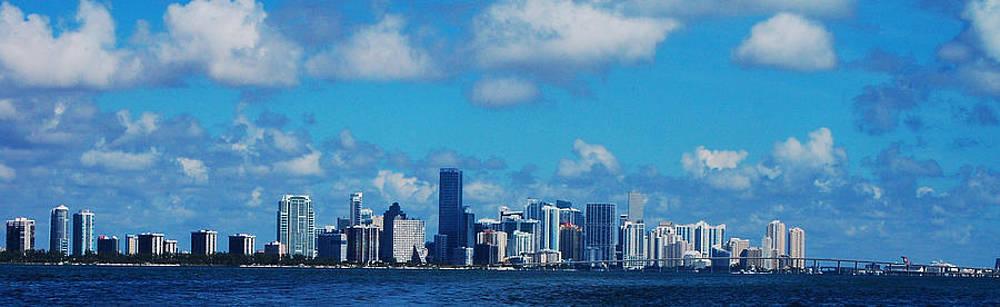 Miami by Ama Arnesen