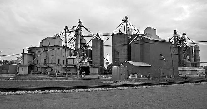 Michael Peychich - Michigan Agricultural Commodities 2094