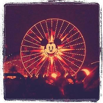 Mickey Wheel by Jaye Howard