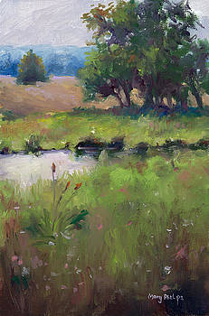 Mid-day meadow by Mary Phelps