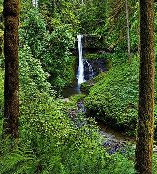 Middle North Falls by David Wynia