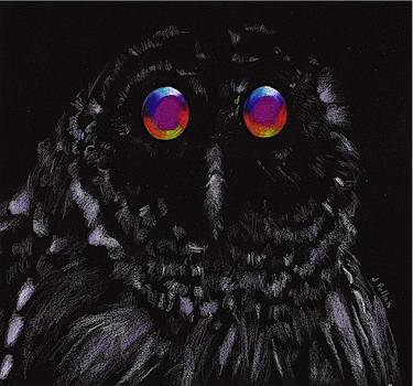 Midnight Owl by Joan Pollak